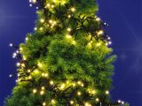 Led Weihnachtsbaum Tannenbaum Beleuchtung Cluster Real throughout dimensions 925 X 1024